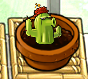 Smallcactus