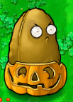 Tall nut pumpkin