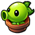 Peashooter sprout 3