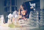 EPA GULF BREEZE LABORATORY, FISHERY BIOLOGIST CONDUCTS STUDIES OF SHRIMP AND CRAB LARVAE