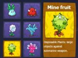 Mine Fruit