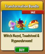 WH&TSandHSinTransformationBundle