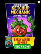 KetchupMechnicAd
