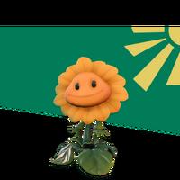 Słonecznik grafika na stronie