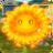 Fire FlowerGW1