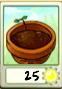 Flower pot Seed