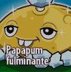CACTUS Gw2 3 Papapum Fulminante