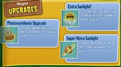 SunflowerUpgrade