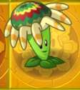 Bloomerangongold