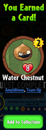 Earning Water Chestnut