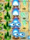 Plantorcha1
