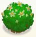 Round flower bush