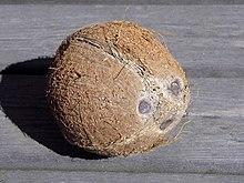 220px-Coconut face