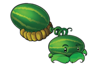 Melonpult2009HD