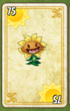 Primal Sunflower Card