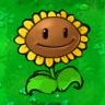 Giant Sunflower1