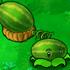 Melon-pult1