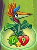 BirdofParadiseonPumpkinShell