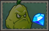 Squash packet gems