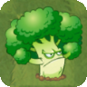 Vigorous Broccoli2