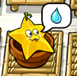 Starfruit thirsty