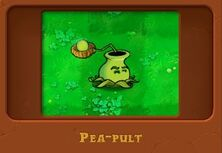 Peapult Plants