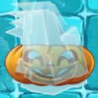 Pumpkin frozen