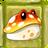 Toadstool2C