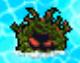 DS Tangle Kelp2