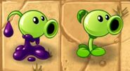 Goo-Peashooter with Regular Peashooter
