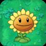 SunflowerO