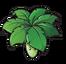 Umbrella-leaf