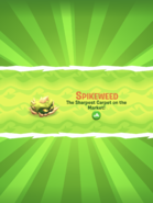 Spikeweed Introduction