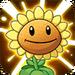 Sunflower line Ability2