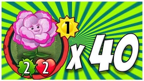 Reincarnation & 39 Others - Plants vs Zombies Heroes