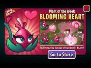 BloomingHeartPlantoftheWeek