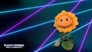 BfN Background - Sunflower (PC)