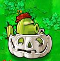 Cactus Ipumpkin