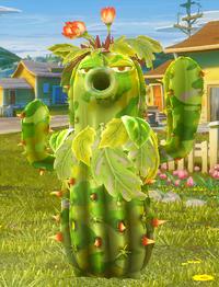 Cactus camuflaje