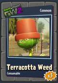 Pothead Weed GW2