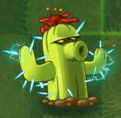 Cactus PF2
