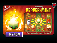 Introducing Pepper-mint with Fire Plants
