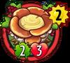 Shelf MushroomH