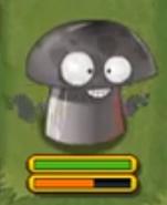 Irascible Mushroom about
