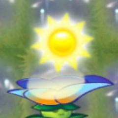 Moonflower cho 50 Mặt trời