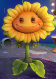 Sunflower GW2