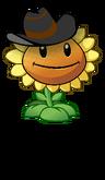 Cowboy sunflower2 small1