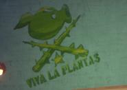 Viva La Plantas