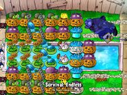 Plants Vs Zombies Setup