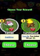 Choice between Cattail and Torchwood